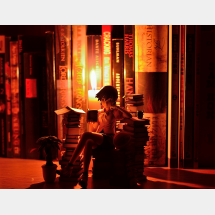 図書館時間遺却する