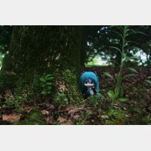 ダヨーさん森に佇む