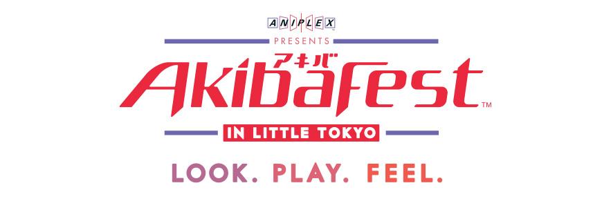 akibafest_large